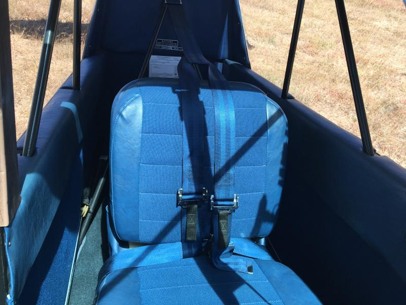 1973 Bellanca 7-GCBC Interior